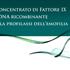 GRAPHIC DESIGNER Roma 24596
