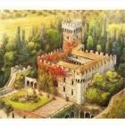 ILLUSTRATORE Firenze 164434