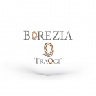 WEB DESIGNER Varese 41629