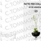 FOTOGRAFO Padova 203932