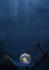 ILLUSTRATORE Aosta 110590