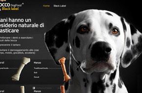 ART DIRECTOR Roma 135255