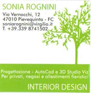 WEB DESIGNER Forlì-Cesena 21273