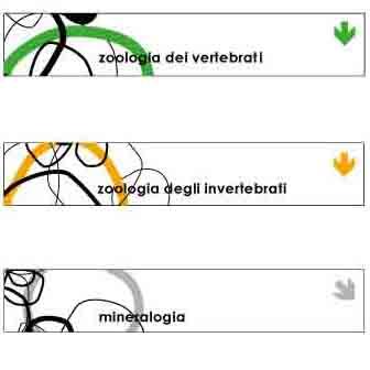 GRAPHIC DESIGNER Brescia 30137