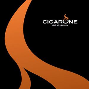 WEB DESIGNER Torino 52825